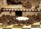 �wi�tynia szczur�w, Indie