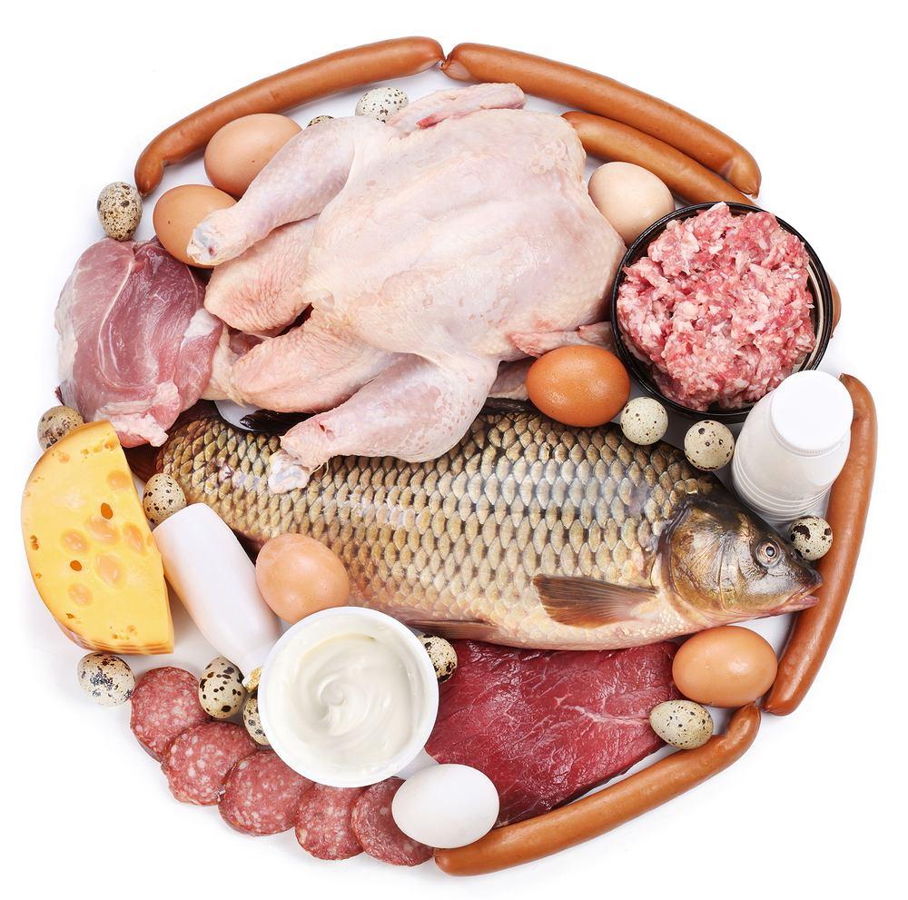 proteiny