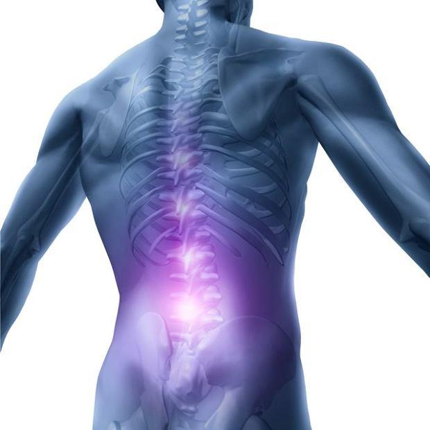 Ból krzyża to jedna z częstszych dolegliwości zgłaszanych lekarzowi pierwszego kontaktu