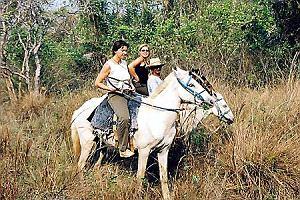 Pantanal - tam, gdzie zawraca wiatr