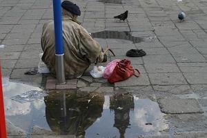 Jego bezdomno��, braci du�a niech��