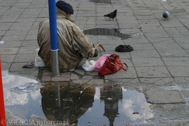 Jego bezdomność, braci duża niechęć