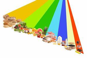 Dieta Willetta, czyli obraz po rewolucji