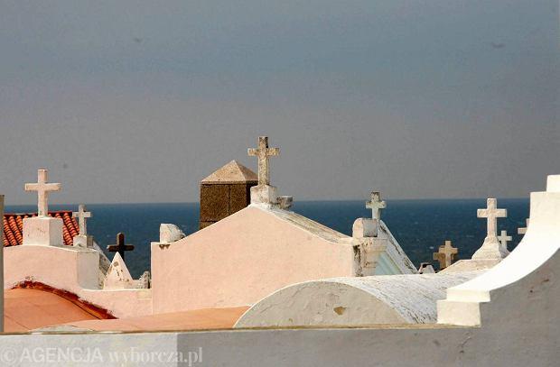 Korsyka promy