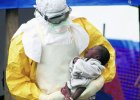 Jak si� szuka leku na ebol�