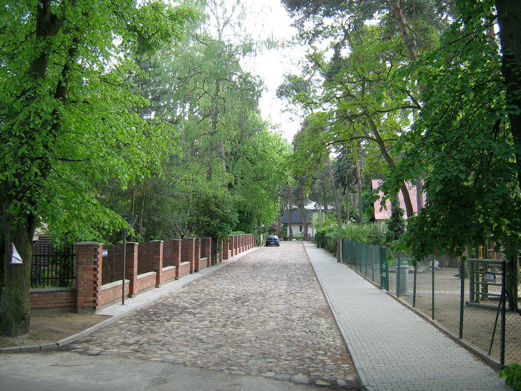 Ulica w Podkowie Leśnej / Fot. CZmarlin - Christopher Ziemnowicz, domena publiczna