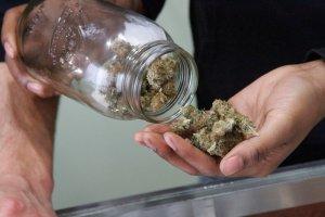 Badania: marihuana wywo�uje 114 razy mniejsze ryzyko zgonu ni� alkohol. Powinna by� legalna?