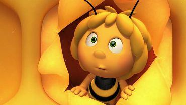 Pszczółka Maja. Film