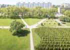 Las ma upamiętnić Polaków ratujących Żydów