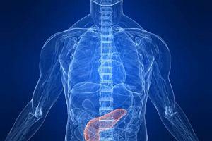 Enzymy trzustkowe - trzustka