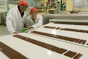 Zobacz jak powstaje czekolada! Odwiedziliśmy fabrykę Wedla