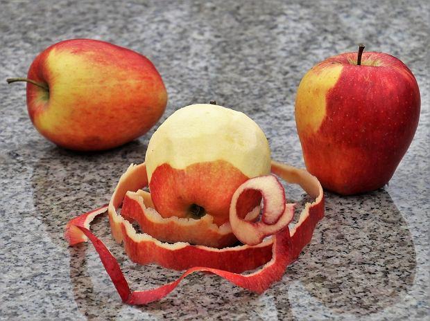 Jabłka. Dlaczego warto jeść jabłka?