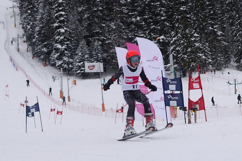 Tauron Energy Cup Ski 2012