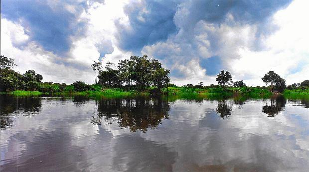 Krajobraz Amazonii nad najd�u�sz� rzek� �wiata