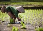 Chiny kultura / Shutterstock