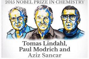 Nagroda Nobla z chemii. Wyr�niono odkrycie mechanizm�w naprawy DNA