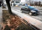 Spór prokuratorów w sprawie kraksy auta wiozącego premier Szydło