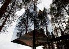 Niesamowite domki na drzewach
