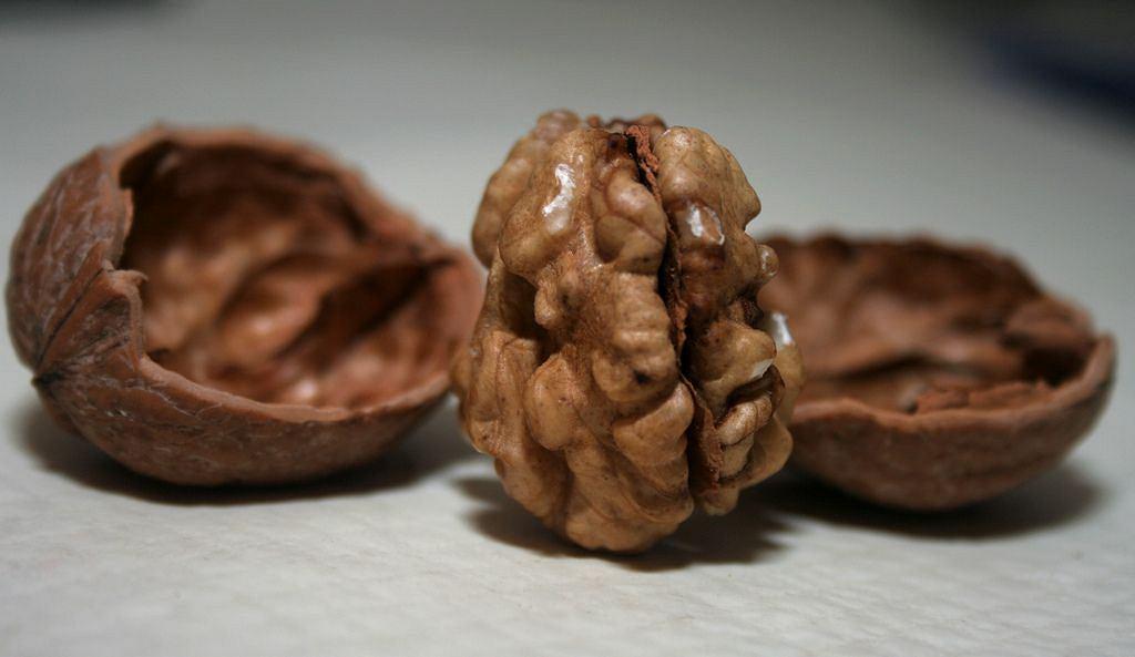 Орехи жирные? Да, но это отличный, здоровый жир