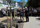 Prezydent Niemiec zasadził drzewo na Kamionku