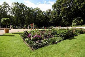 Zamek Królewski, Łazienki, Pałac w Wilanowie - w listopadzie zwiedzisz je za darmo