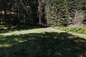 Znaleźli w Tatrach ciało poszarpane przez zwierzęta. Prokuratura: To zaginiony 25-letni Michał K.