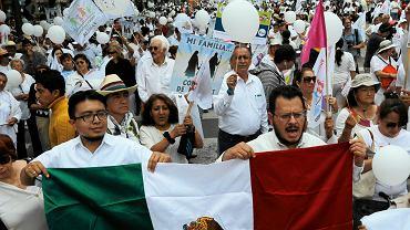 Sobotni marsz Narodowego Frontu na Rzecz Rodziny w Mexico City