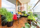 Warszawskie, kolorowe mieszkanie z panoramą Bemowa