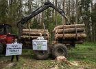 ''Przyjechał leśniczy i oświadczył, że las jest zamknięty''. Ekolodzy zostają w Puszczy Białowieskiej