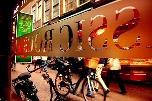 Holandia Amsterdam. Coffeeshop