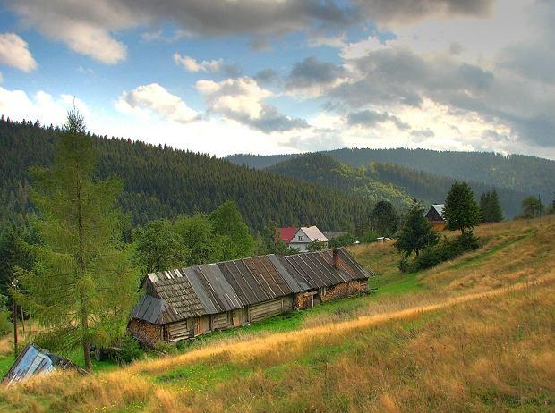 Złatna - malownicza wieś w Beskidzie Żywieckim, w której łatwiej spotkać dziką zwierzynę, niż turystów