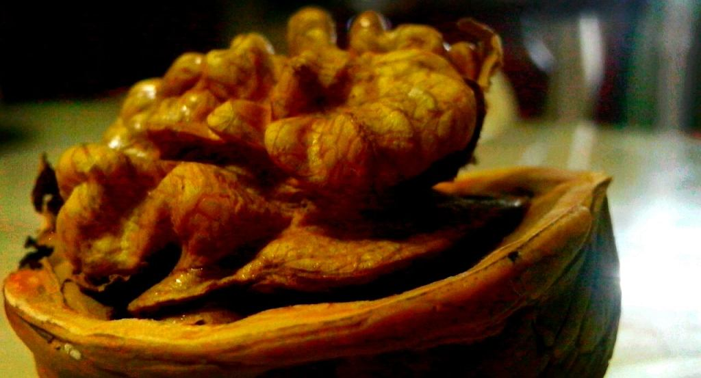 Грецкий орех выглядит почти как наш мозг, но хорошо ли это для мозга? Да!