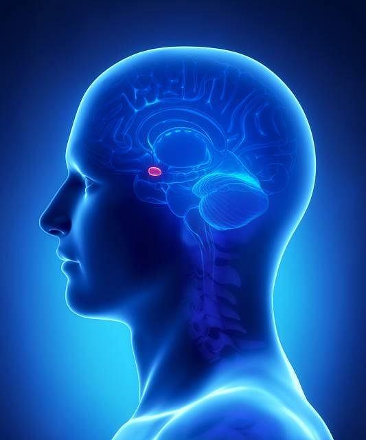 Eunuchoidyzm - objawy, diagnoza, leczenie