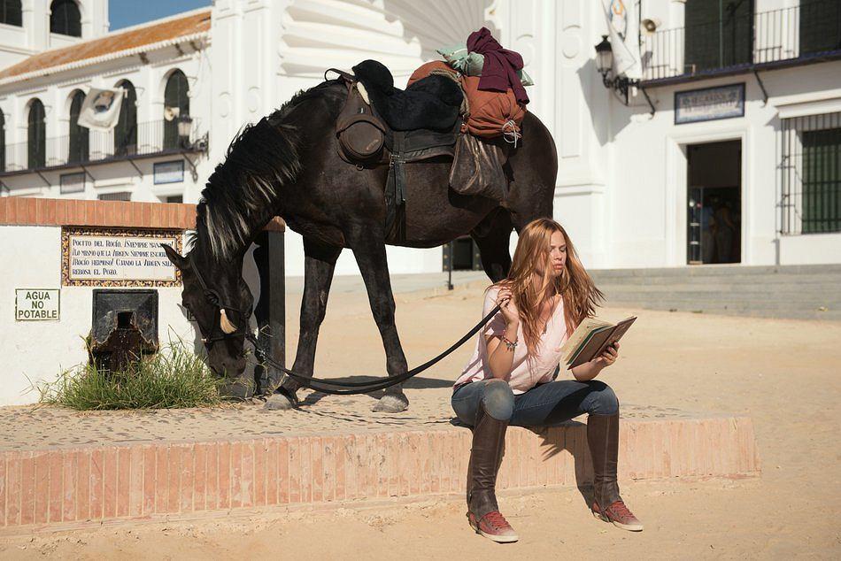 'Wicher - dzikie konie' / Materiały prasowe