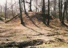 Archeolodzy z Gliwic na tropie �redniowiecznych grod�w