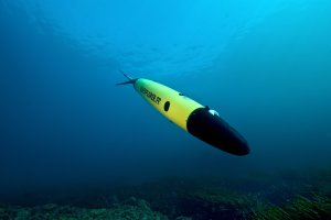 Dron z �adunkiem wybuchowym przy gazoci�gu Nord Stream