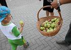 Putin chcia� uderzy� w nas jab�kami. Nie uda�o si�. Polska na tym zyska�a