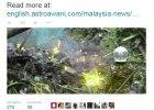 Katastrofa �mig�owca w Malezji. W�r�d sze�ciu ofiar, b. ambasador w USA