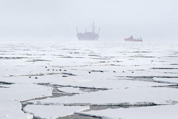 Arktyka za 49 mld koron. Statoil poszuka ropy za kołem podbiegunowym