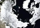 """""""Oddychaj�ca Ziemia"""" powsta�a po po��czeniu satelitarnych zdj�� NASA [ANIMACJA]"""