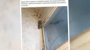 Sufit w łazience w Szpitalu Klinicznym Dzieciątka Jezus