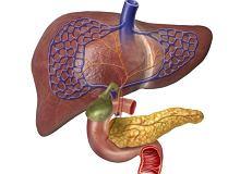 Trzustka Choroby Objawy I Leczenie Trzustki