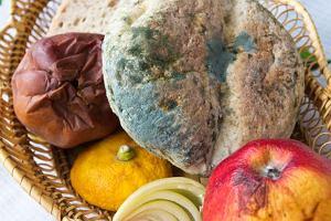 Pleśń na produktach spożywczych - odkrajać, wyrzucać, jak nie dopuszczać do jej powstawania?