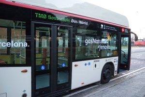 Gdynia chce mie� nowe autobusy hybrydowe. Ale nikt nie chce ich wyprodukowa�