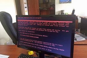 Jak działa wirus Petya i dlaczego atakuje komputery również w Polsce?
