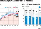 Z�y model polskiego g�rnictwa, ale mo�na to zmieni�