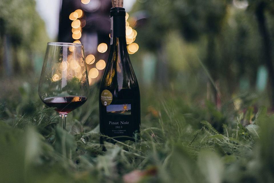 Zdjęcie numer 1 w galerii - Dobre polskie wina naprawdę istnieją, choć budzą kontrowersje. Głównie ze względu na cenę