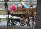 Resort pracy: Najubożsi nie zsumują zasiłków i dodatku 500 zł na dziecko