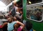 Białystok nie myśli o przyjęciu uchodźców. Tęskni za Sobieskim