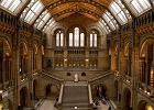 Muzeum Historii Naturalnej - Anglia Londyn. Jedno z najwi�kszych muze�w londy�skich; cz�ciowo interakcyjne. Prezentuje ponad 70 milion�w eksponat�w z r�nych dziedzin - botaniki, entomologii, mineralogii, paleontologii i zoologii. W muzeum mo�na m.in. do�wiadczy� symulacji trz�sienia Ziemi i zobaczy� odlewy szkielet�w dinozaur�w.